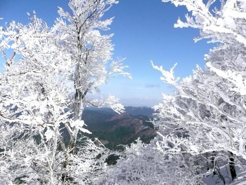 20100327高見山 074 (40).jpg