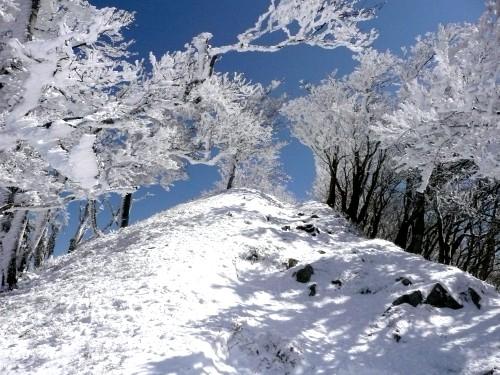 20100327高見山 074 (42).jpg