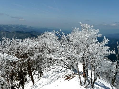 20100327高見山 074 (59).jpg