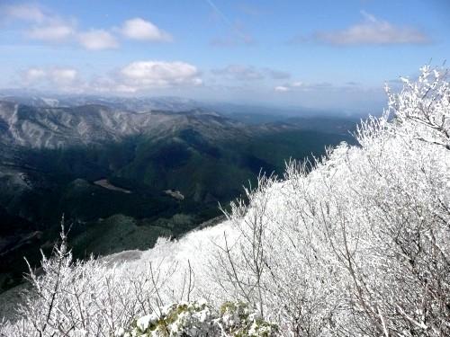 20100327高見山 074 (36).jpg