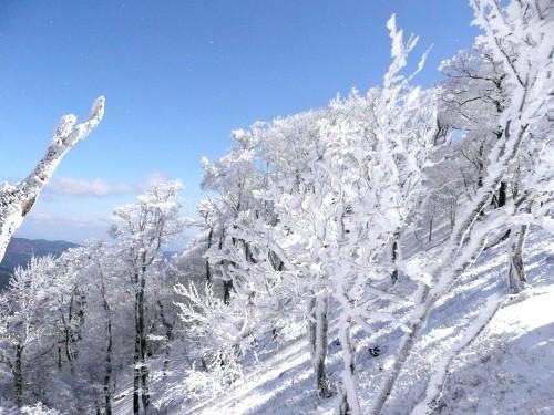 20100327高見山 074 (37).jpg