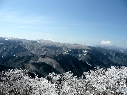 20100327高見山 074 (57).jpg