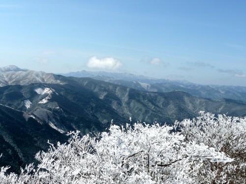 20100327高見山 074 (58).jpg