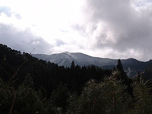 20100327高見山 074 (64).jpg